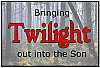 Bringing Twilight Out Into The Son - BOOKLET
